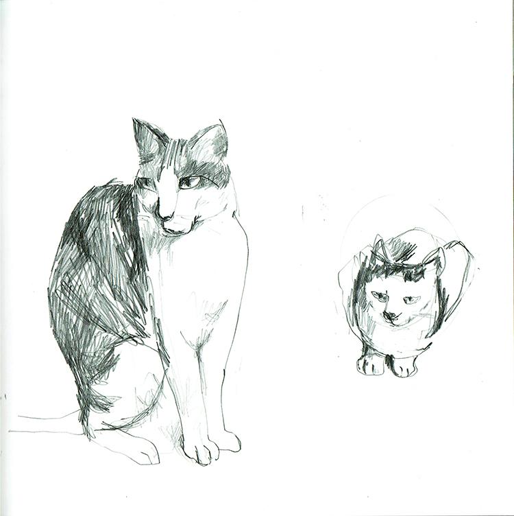 Illustration, Skizze,Pussycats
