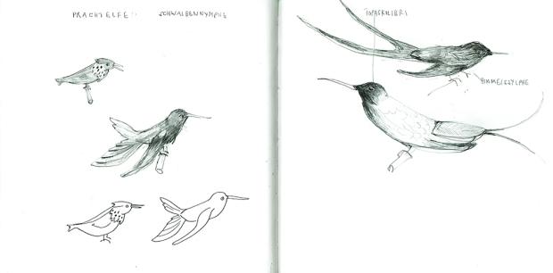 Illustration, Skizze, Vögel